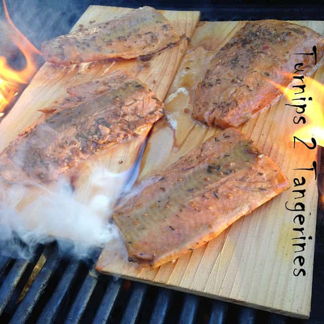 Island Jerk Salmon on Cedar Planks