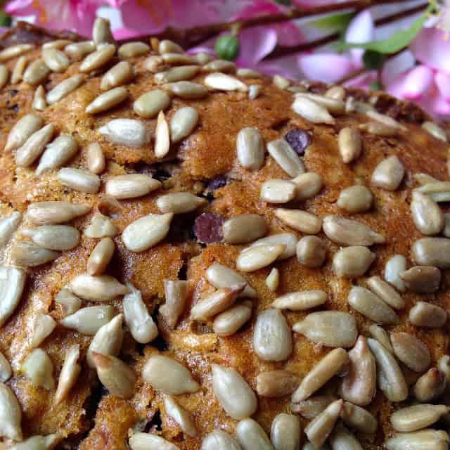 Pumpkin Chocolate Chip Sunflower Seed Bread