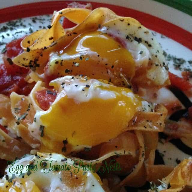egg tomato