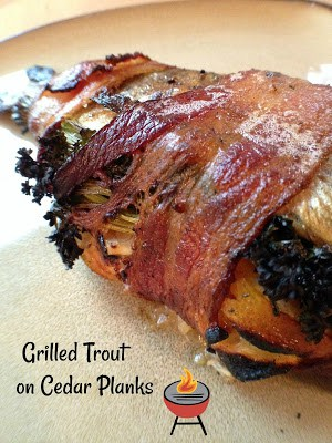 bacon wrapped grilled