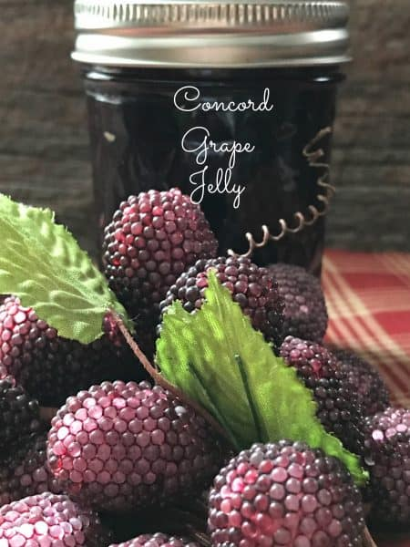 Concord Grape Jelly