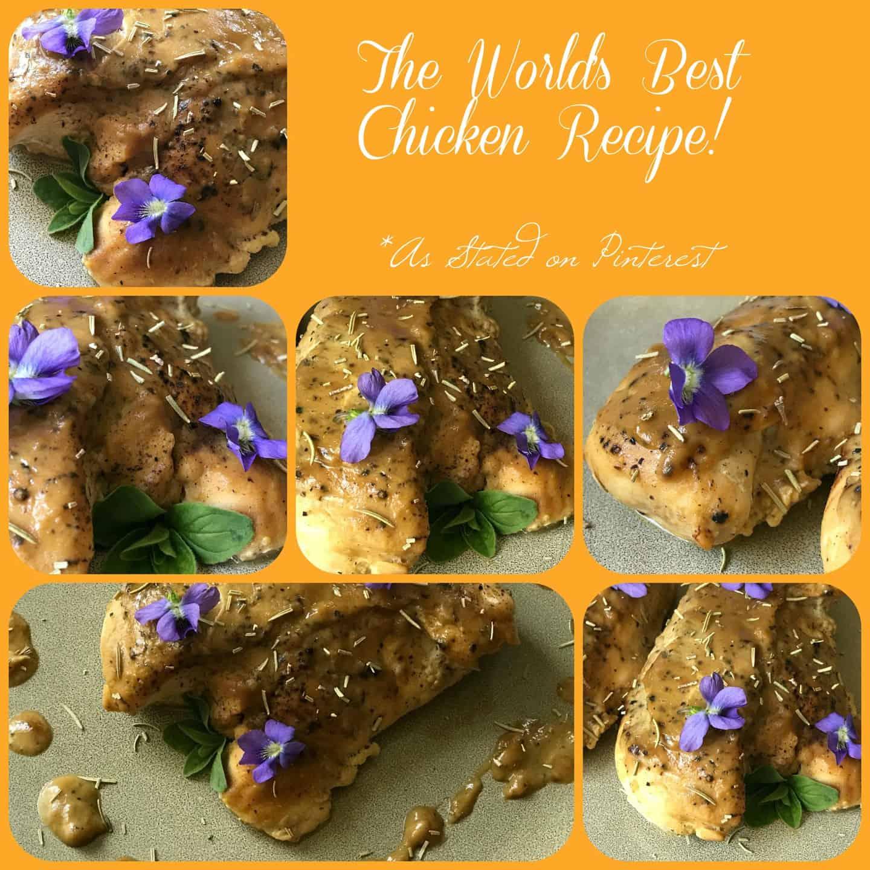 World's Best Chicken Recipe