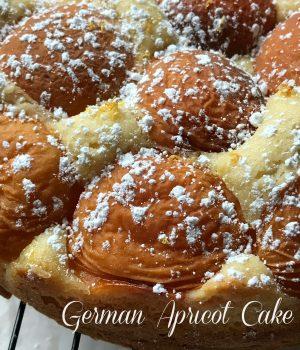 german apricot