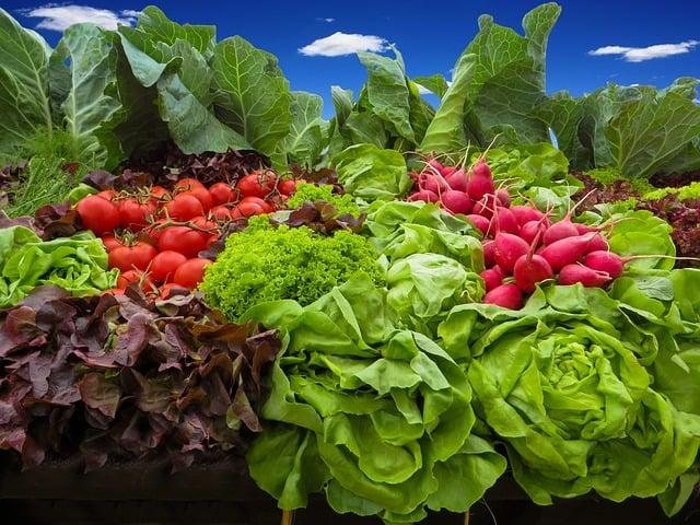 Five Secrets to Jump Start Your Summer Garden