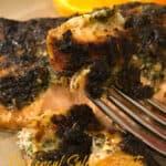 provencal salmon