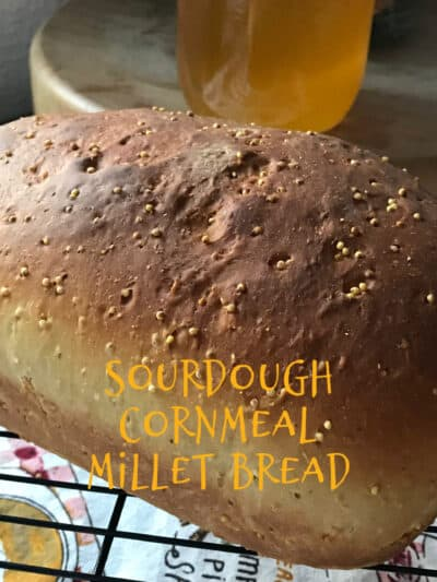 Sourdough Cornmeal Millet Bread