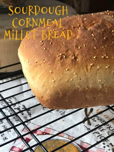 sourdough cornmeal