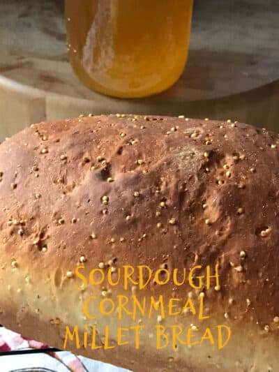 sourdough cornmeal