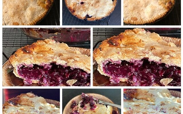 Fresh Blueberry Pie and Blueberry Haven